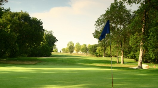 Photo of a hole on the green of the Headingley golf course, with trees on either side and a blue flag in the ground.
